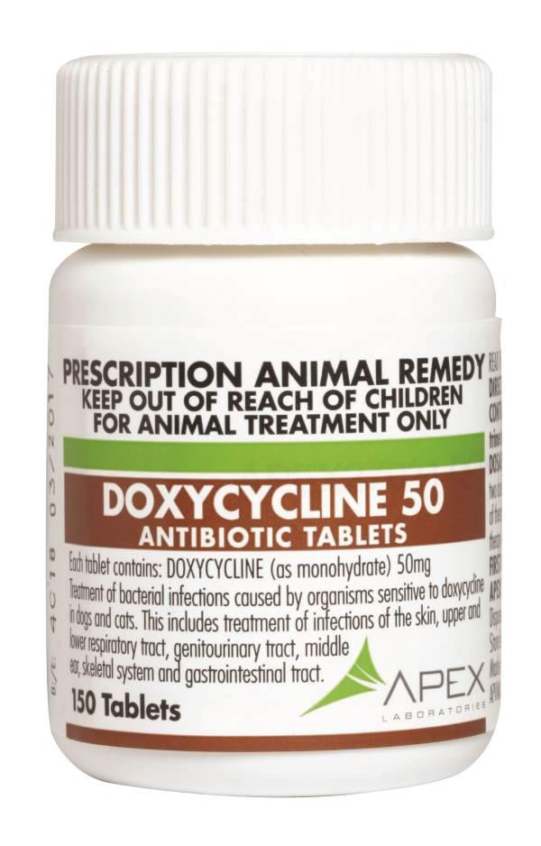 50 mg Doxycycline